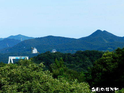 2015-08・28 今日の我が町.JPG