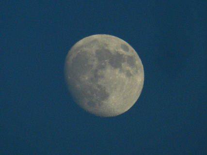 2015-10・25 夕空に輝く月 (1).JPG