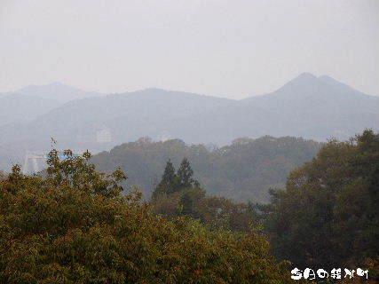 2015-11・26 今日の我が町.JPG