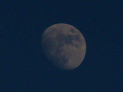 2015-12・22 夕空に輝く月.JPG