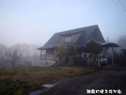 2015-12・24 朝霧の里山光景を・・・ (4).JPG