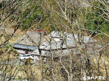 2016-03・22 今朝の古民家.JPG