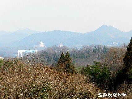 2016-03・30 今日の我が町.JPG