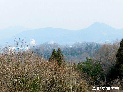 2016-03・31 今日の我が町.JPG