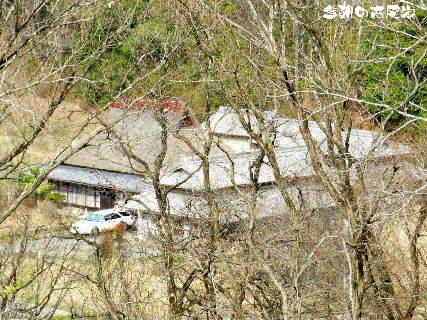 2016-03・31 今朝の古民家.JPG