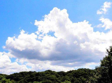 2016-08・22 夏の雲 (1).JPG
