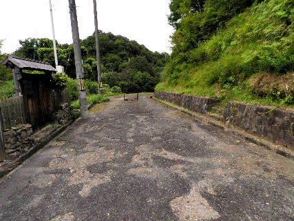 2016-08・27 我が家のスナップ (4).JPG