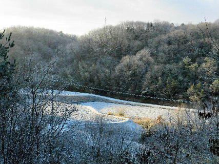 2017-01・24 今日も里山は雪景色 (3).JPG