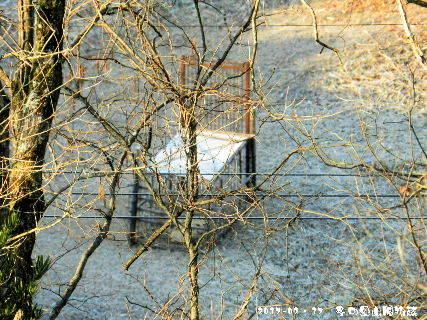 2017-02・17 冬の里山風物詩.JPG