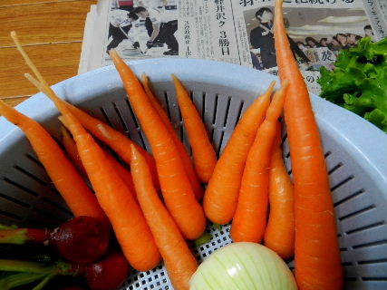 2017-06・08 我が家のスナップ・・・ (5).JPG