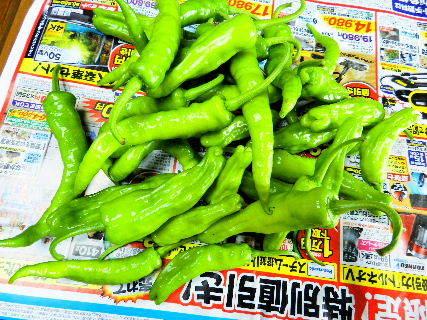 2017-07・17 我が家のスナップ・・・ (4).JPG