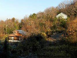 2017-12・22 里山は今日も霜化粧 (6).JPG