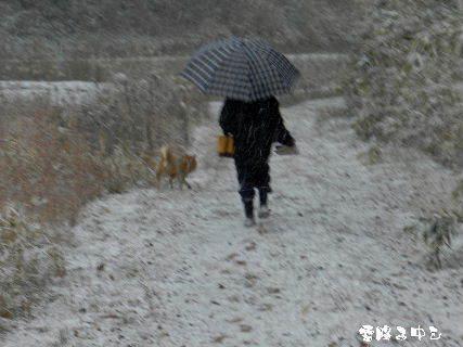 2015-01・01 雪降る中を・・・.JPG