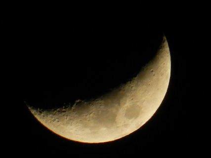 2015-03・25 弥生の空で輝く月.JPG