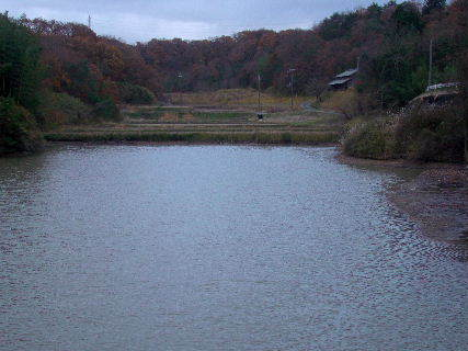 2015-12・11 雨の里山光景 (5).JPG