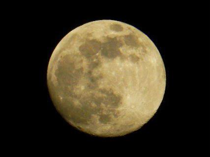 2016-05・20 五月の空に輝く月.JPG