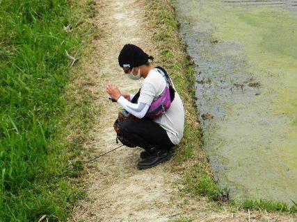 2016-05・24 池の釣り人・・・ (1).JPG