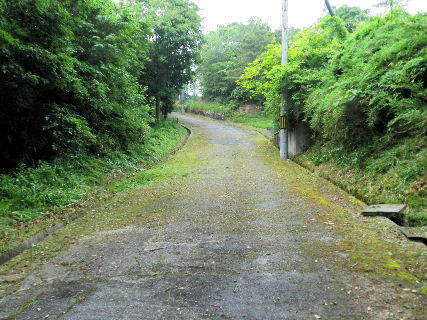 2016-05・28  導入路の草刈り作業 (2).JPG