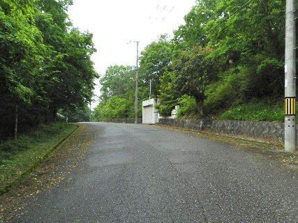 2016-05・28  導入路の草刈り作業 (4).JPG