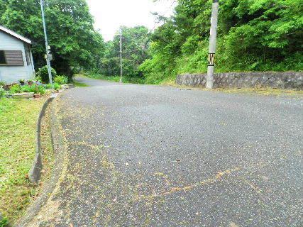 2016-05・28  導入路の草刈り作業 (5).JPG