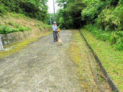 2016-05・28  導入路の草刈り作業 (7).JPG
