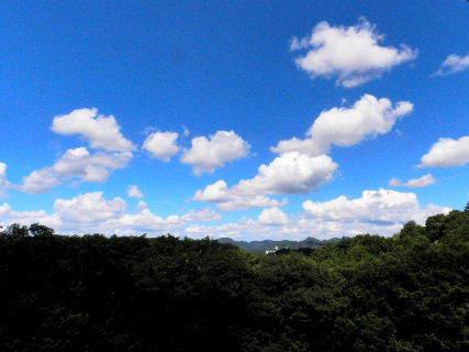 2016-08・21 葉月の空に沸き立つ雲 (1).JPG