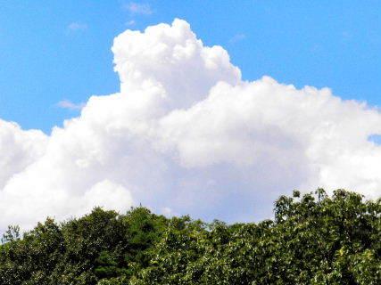 2016-08・21 葉月の空に沸き立つ雲 (2).JPG