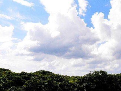2016-08・24 葉月の空に沸き立つ雲 (1).JPG