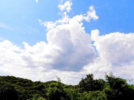 2016-08・24 葉月の空に沸き立つ雲 (4).JPG