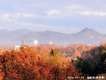 2016-12・11 今日の我が町.JPG