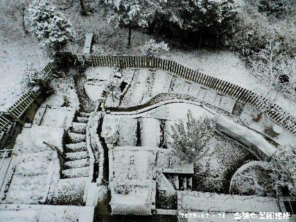 2017-01・16 雪化粧の菜園・・・.JPG