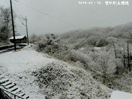 2017-01・16 雪化粧の里山模様・・・ (3).JPG