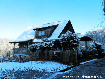 2017-01・17 雪化粧の我が家・・・.JPG