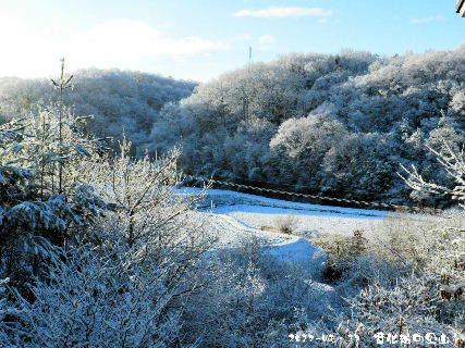 2017-01・17 雪化粧の里山 (2).JPG