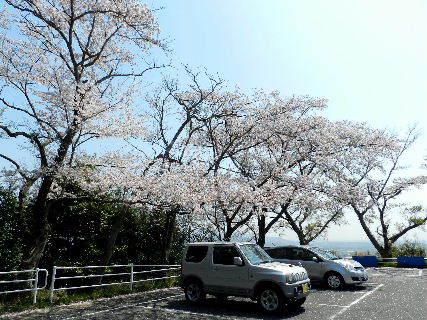 2017-04・14 播磨中央公園にて・・・ (1).JPG