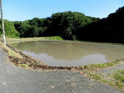 2017-05・22 里山も田植えの準備を (2).JPG